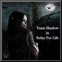 https://www.facebook.com/TeamShadowRelay/