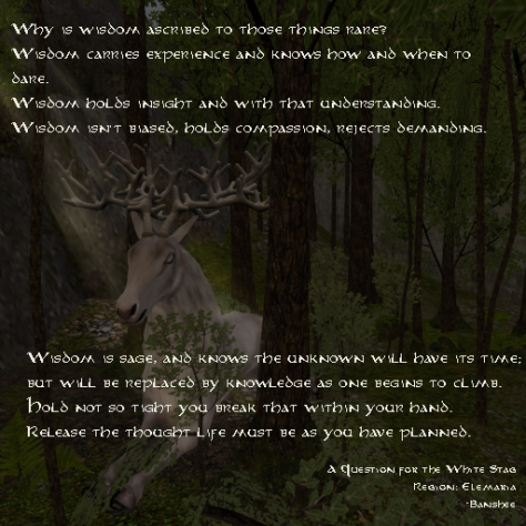 A Question for the White Stag by Banshee Heartsong