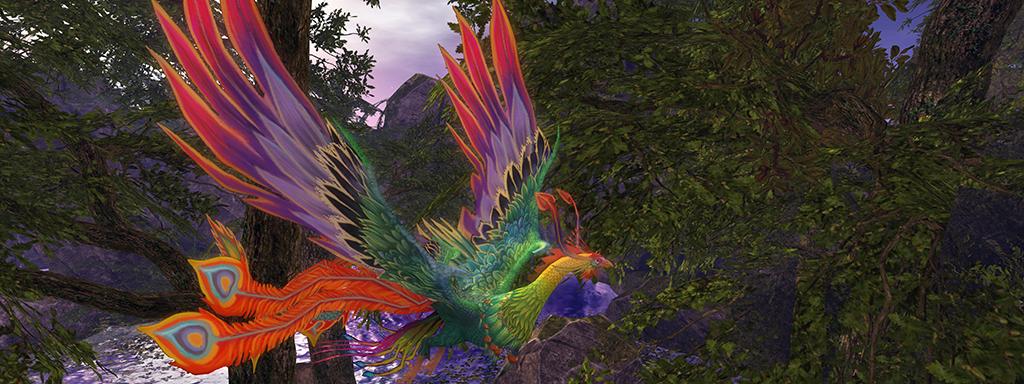Seventh magic bird banner